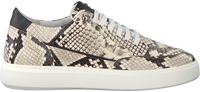 Beige Verton Sneakers 0036  - medium