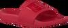 Rode CALVIN KLEIN Slippers CHRISTIE - small
