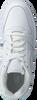 Witte NIKE Sneakers EBERNON LOW MEN - small
