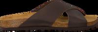 Bruine MAZZELTOV. Slippers 19-0465  - medium