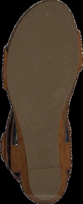 Cognac CA'SHOTT Sandalen 8029  - large
