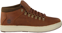 Cognac TIMBERLAND Sneakers CITYROAM CUPALPINE CHUK - medium