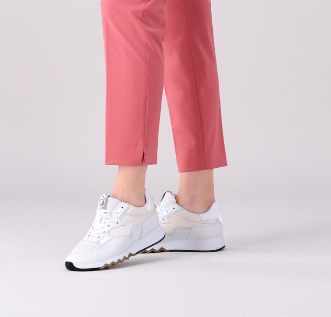 Witte FLORIS VAN BOMMEL Lage sneakers 85334  - large