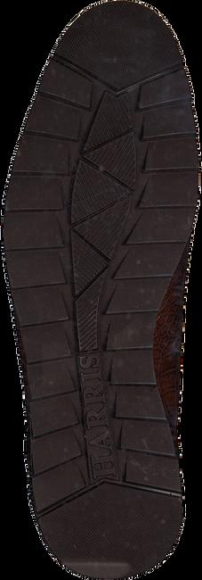 Cognac HARRIS Nette schoenen CARDIFF  - large