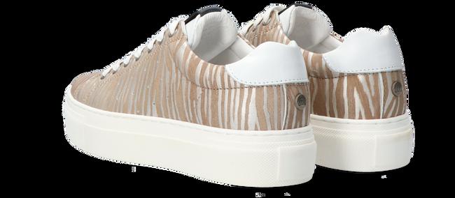 Beige MARUTI Lage sneakers TED  - large