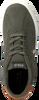 Groene POLO RALPH LAUREN Sneakers HADLEY  - small