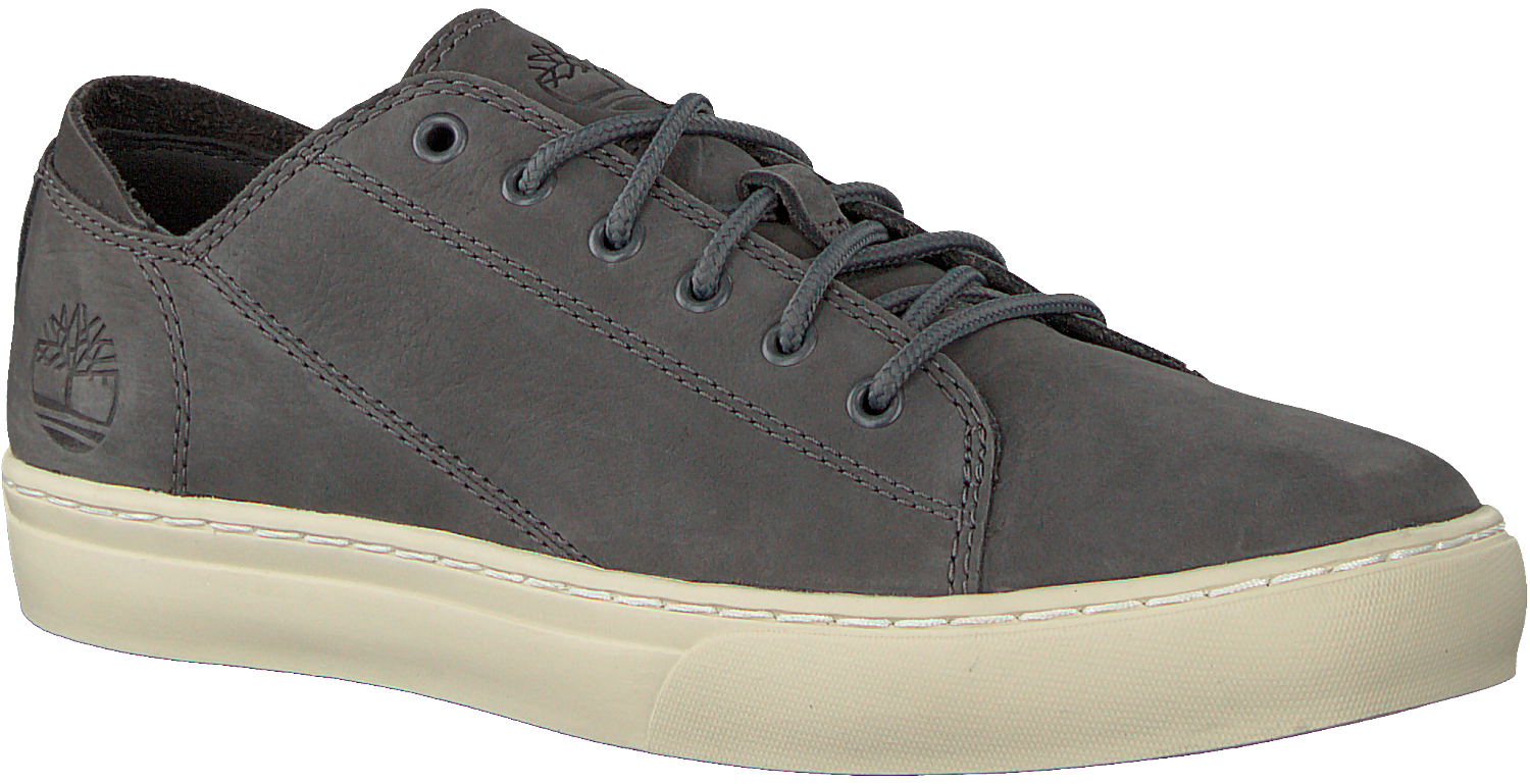 Grijze TIMBERLAND Sneakers ADV 2.0 CUPSOLE MODERN OX Omoda.nl