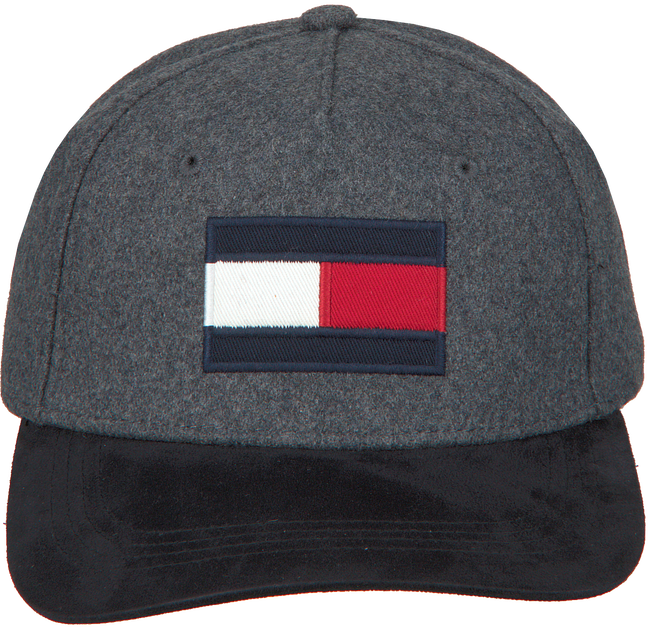 Grijze TOMMY HILFIGER Pet BIG FLAG CAP  - large