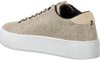 Beige HUB Sneakers HOOK-W XL  - small