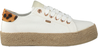 Witte MEXX Lage sneakers CHEVELIJN  - medium