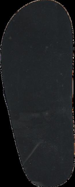 Blauwe GANT Slippers BREEZE - large