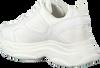 Witte NIK & NIK Sneakers JANE SNEAKER  - small
