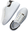 Witte GUESS Lage sneakers BRADLY  - small
