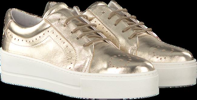 Gouden ROBERTO D'ANGELO Sneakers ELY  - large