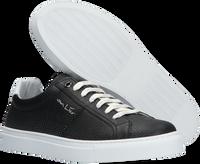 Zwarte VAN LIER Lage sneakers NOVARA - medium