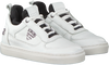 Witte VINGINO Sneakers DALEY - small
