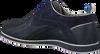 Blauwe FLORIS VAN BOMMEL Sneakers 18201  - small