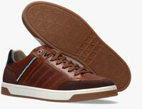 Cognac GAASTRA Lage sneakers WALLACE  - medium