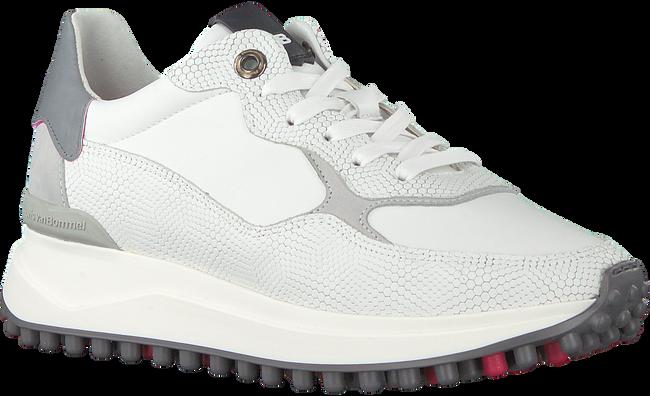 Witte FLORIS VAN BOMMEL Lage sneakers 85307  - large