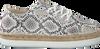 Beige ROBERTO D'ANGELO Sneakers NEPAL  - small