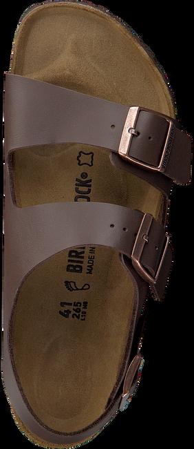 Bruine BIRKENSTOCK Slippers MILANO HEREN - large