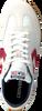 Witte CONVERSE Ballerina's ALL STAR TRAINER OX WHITE/GAR - small