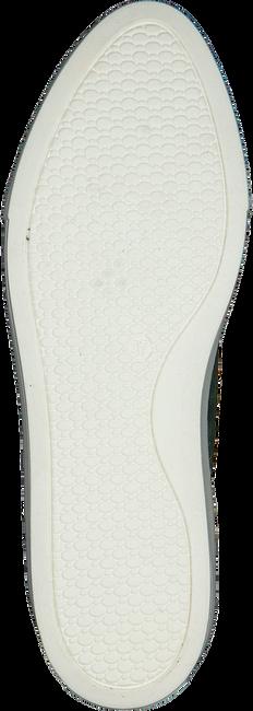 Groene ROBERTO D'ANGELO Sneakers LEEDS  - large