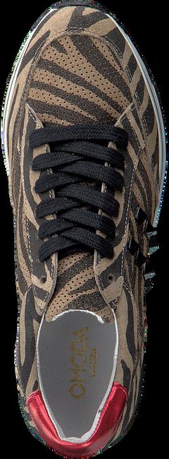 Taupe OMODA Sneakers LEANSTUD SNEAKER - large