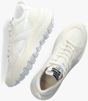 Witte ASH Lage sneakers SPIDER  - medium