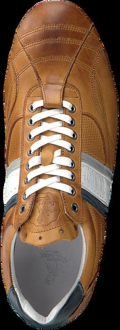 Cognac CYCLEUR DE LUXE Lage sneakers CRUSH CITY  - large