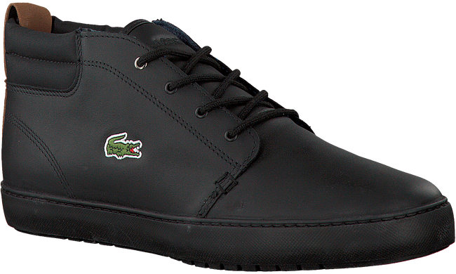 LACOSTE SNEAKERS AMPTHILL TERRA 317 - large
