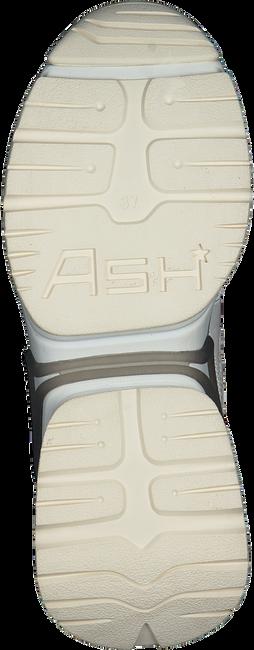 Witte ASH Lage sneakers BANG  - large