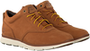 Cognac TIMBERLAND Sneakers KILLINGTON HALF CAB  - small