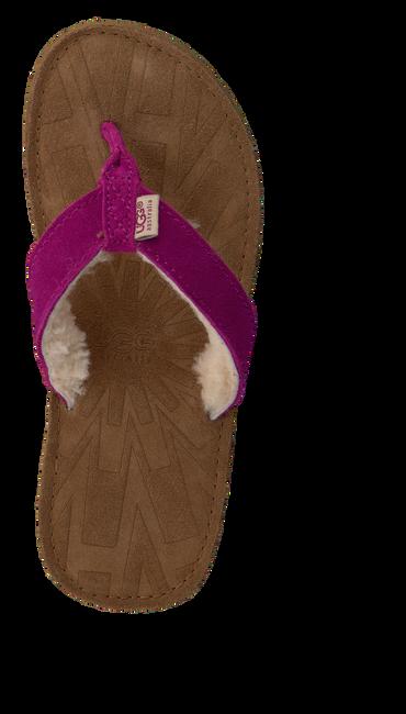 Roze UGG Slippers TASMINA K  - large