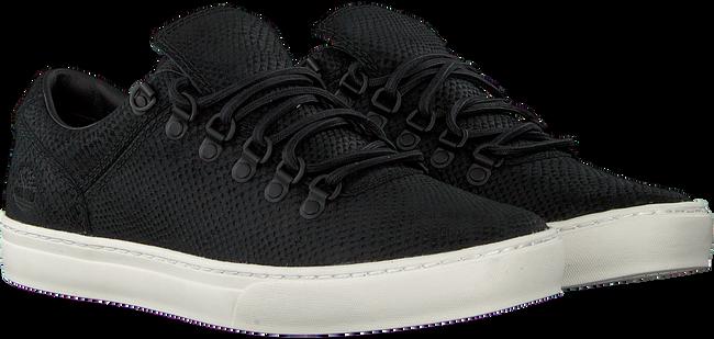 Zwarte TIMBERLAND Lage sneakers ADV 2.0 CUPSOLE ALPINE OX  - large