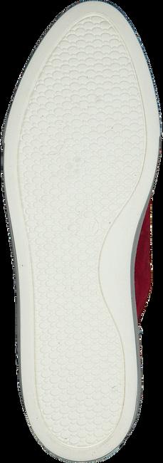 Rode ROBERTO D'ANGELO Sneakers LEEDS  - large