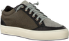 P448 LAGE SNEAKER LOVE LOW - small