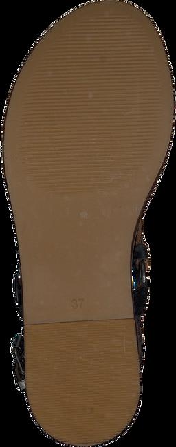Zwarte NOTRE-V Sandalen 443020  - large