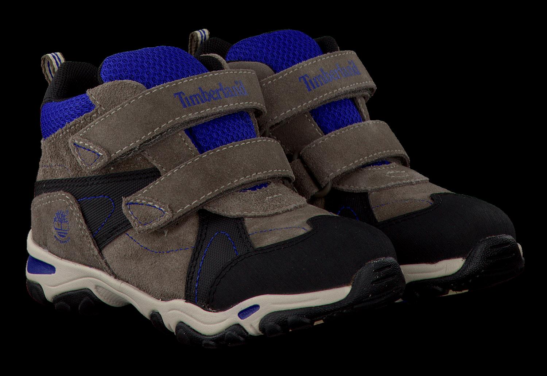 Bruine TIMBERLAND Sneakers TRAIL FORCE WP Omoda