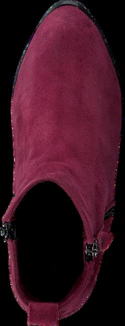 Rode NOTRE-V Enkellaarsjes 119 30065LX  - large