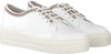 Witte ROBERTO D'ANGELO Sneakers YORK  - small