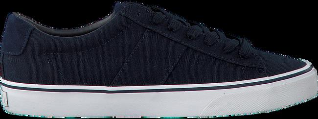 Blauwe POLO RALPH LAUREN Sneakers SAYER  - large