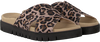 Beige GABOR Slippers 741 - small