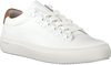 Witte BLACKSTONE Veterschoenen PL80 - small