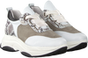 Witte ROBERTO D'ANGELO Sneakers 705  - small