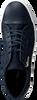 Blauwe CALVIN KLEIN Sneakers F0875  - small