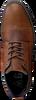 Cognac GAASTRA Veterschoenen CELO MID  - small