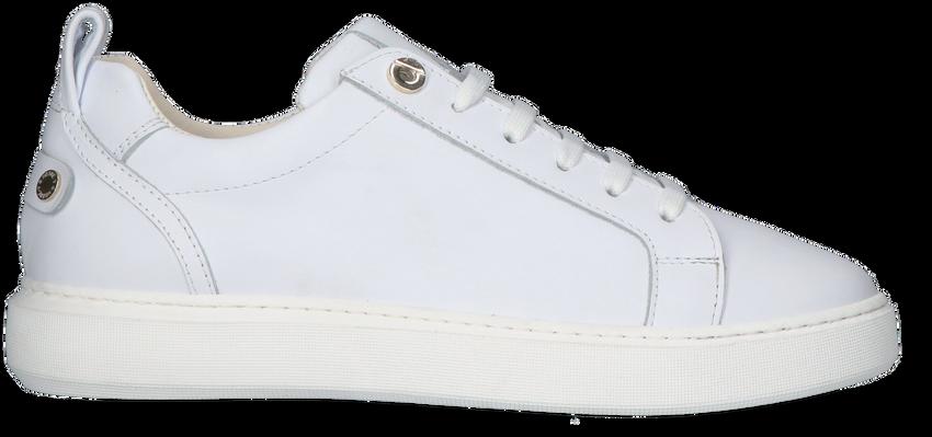 Witte NOTRE-V Lage sneakers 02-15  - larger