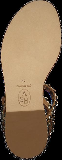 Bruine ASH Sandalen PLAY - large