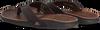 Bruine REEF Slippers J-BAY III  - small